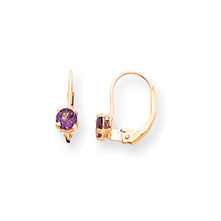 February Birthstone - Genuine Amethyst 4mm Gemstone - 14K Yellow Gold Leverback Earrings/