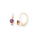 February Birthstone - Genuine Amethyst 4mm Gemstone - 14K Yellow Gold Leverback Earrings